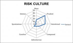 spiderdiagram risk culture